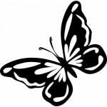 Butterfly Cabinet Door Stencil