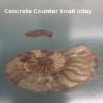 Concrete Countertop Snail Inlay