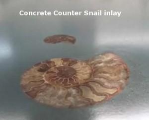 Concrete Countertop Snail Inlay